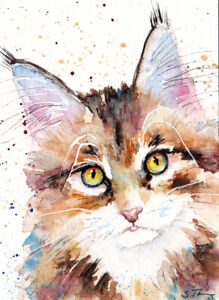 maine coon cat kitten ACEO Original ATC card watercolor minature by su-art