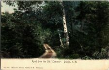 """1907. ROAD FROM THE OLD """"COMMON"""" DUBLIN, N.H. POSTCARD SC9"""