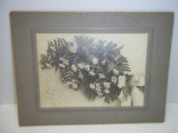 Vintage Cabinet Photo Board Mounted Funeral Flowers