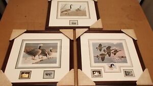Set of (3) Framed Alaska, NY, Wyoming Waterfowl Print & Stamp Signed Limited KWy