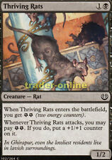 4x thriving Conseil (seulemant le rat) kaladesh Magic