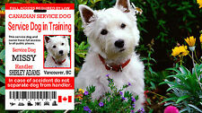 Canadian Service Dog In Training Card, Service Dog In Training  Id Card, Tag