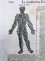 Angiologie 1614 Veine Neurologie Crâne Médecine Ambroise Paré Chirurgie Cerveau
