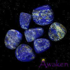 *ONE* LAPIS LAZULI Natural Tumbled Stone Approx 15-20mm *TRUSTED SELLER*
