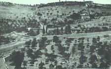 Jerusalem Palestine Israel Mount of Olives unused 1900s postcard