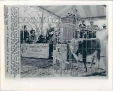 1974 Farmers Can't Afford to Raise Me Cow Sen George McGovern Press Photo
