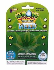 Grow Your Own Weed Plant Leaf