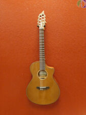 Breedlove Pursuit Nylon String Acoustic Electric Guitar, Gig Bag Included
