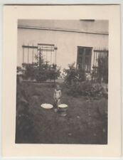 (F22855) Orig. Mini-Foto Würbenthal, Kind im Garten d. Grohmann-Kolonie 1932