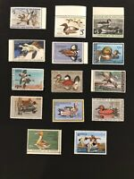 Mint Duck Stamp Collection (RW41-RW54) 14 Mint NH +Extras