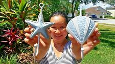 AWESOME SET OF (2) STARFISH & SEA SHELL WALL DECOR HANGERS! SHIP FROM FLORIDA
