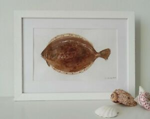 Plaice Painting, Original Watercolour (32.5 cm x 23.5 cm), Fish artwork