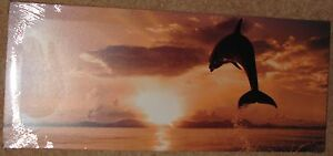 """Dolphin Leaping From The Ocean  48"""" x 20"""" Canvas on a wooden frame"""