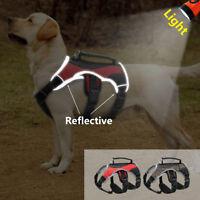 Hundegeschirr Tragehilfe/Gehhilfe Aufzug Tragegeschirr Welpe Harness