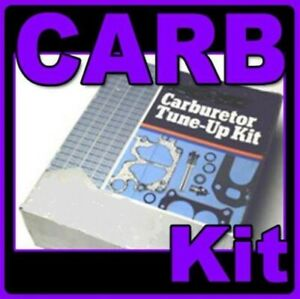 Carburetor kit for Chevrolet & GMC Truck 1977 - 1979 6cyl -clean out your carb!