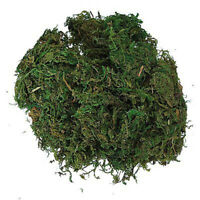 50g/bag Micro Landscape Garden supplies Green Artificial Dried Moss For Plants