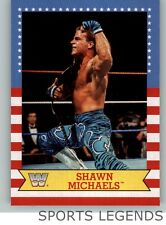 2017 WWE Heritage Summerslam All Stars #5 Shawn Michaels