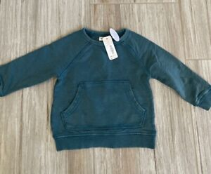 Gymboree Green Sweatshirt