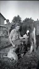 Farm Boy Milking Cow Cats Get A Drink Squirt Vintage 1940s Negative Photo Ohio