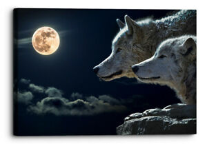 Wolf Moon Cloud Animals Canvas Wall Art Picture Home Decor