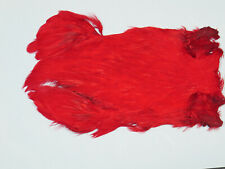 RED INDIAN HEN CAPE,  Fly tying feathers,materials