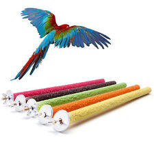 Pets Toys Claws Grinding Station Rack Birds Parrots Training Support Large Size