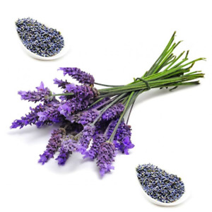 Dried Lavender Norfolk Extra Fragrant Loose choice of weight 10g - 2Kg UK