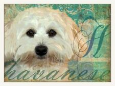 Havanese Bichon- Fluffy Dog Print Poster Vintage Look- signed Wendy Presseisen