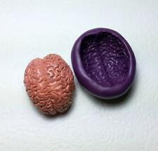 Large 3D Anatomy Brain Silicone Mold (41mm) Body Organ