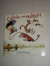 AMP CALVIN & HOBBES Bill Waterson TPB Trade Paperback