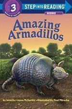 Amazing Armadillos (Brand New Leveled Reader Paperback) Jennifer Mckerley
