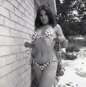 1960s Negative-sexy pinup girl Lenore Stewart in bikini-cheesecake t283565