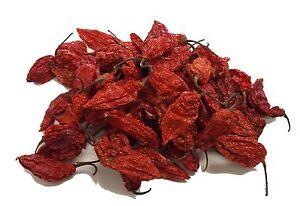 10g Dried Chilli Chili Naga Bhut Jolokia - Ghost Pepper - CHILLIESontheWEB