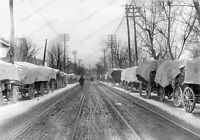 8x10 Print Covered Wagons Filled Crops Line the Streets Lexington KY 1896 #CW763