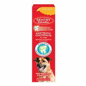 Petrodex Advanced Dental Enozymatic Toothpaste Poultry Flavor for Dogs 6.2 oz