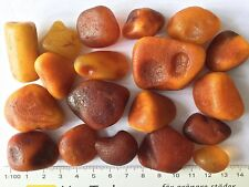 Collection of antique vintage egg yolk rough raw Baltic amber drops