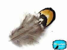 1 Pack - GOLDEN YELLOW Reeves Venery Pheasant Plumage feathers 0.10 oz.