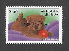 Dog Art Body Study Portrait Postage Stamp Norfolk Terrier Puppy Antigua Mnh
