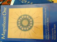 Magnificent One: Selected New Verses from Divan... by Rumi, Jelaluddin Paperback