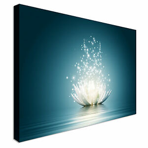 Magic Lotus Flower Canvas Wall Art Picture Print
