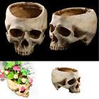 Resin Hollow Skull Head Planter Pot Halloween Party Vase Art Ornament Home Decor
