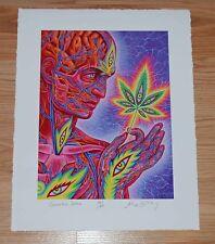 Cannabis Sutra Alex Grey Art Print Poster S/# 50 wCOA Tool Medical Marijuana MMJ