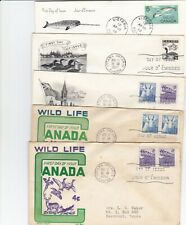 5 First day covers ,wild animals, nice cat. value