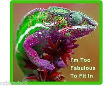 Funny Fabulous Lizard Camaleon Refrigerator / Locker Magnet Gift Card Insert