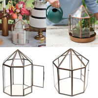 Modern Glass Metal Geometric Terrarium Succulent Indoor Plant Planter House Box