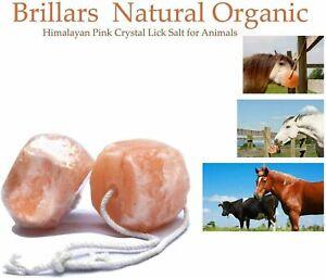 HIMALAYAN ROCK SALT ROPE LICK XL 3KG Horse Lick Pony Livestock Treat Supplement