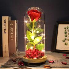 Schöne das Biest Inspiriert Aufleuchtend Zauber Rose Im Glas Beliebt eNwrg Ksy