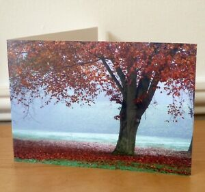 Blank Greetings Cards Flower Floral Autumn Birthday All Occasions Notecard