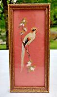 Feather Art Wood Framed Guyacama Green Bird Vintage Original w Back Label