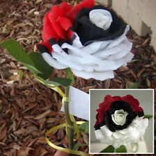 Pack of 100pcs Pokemon Black Pearl Semillas Rosa Flores Planta Jardín Rose Seeds